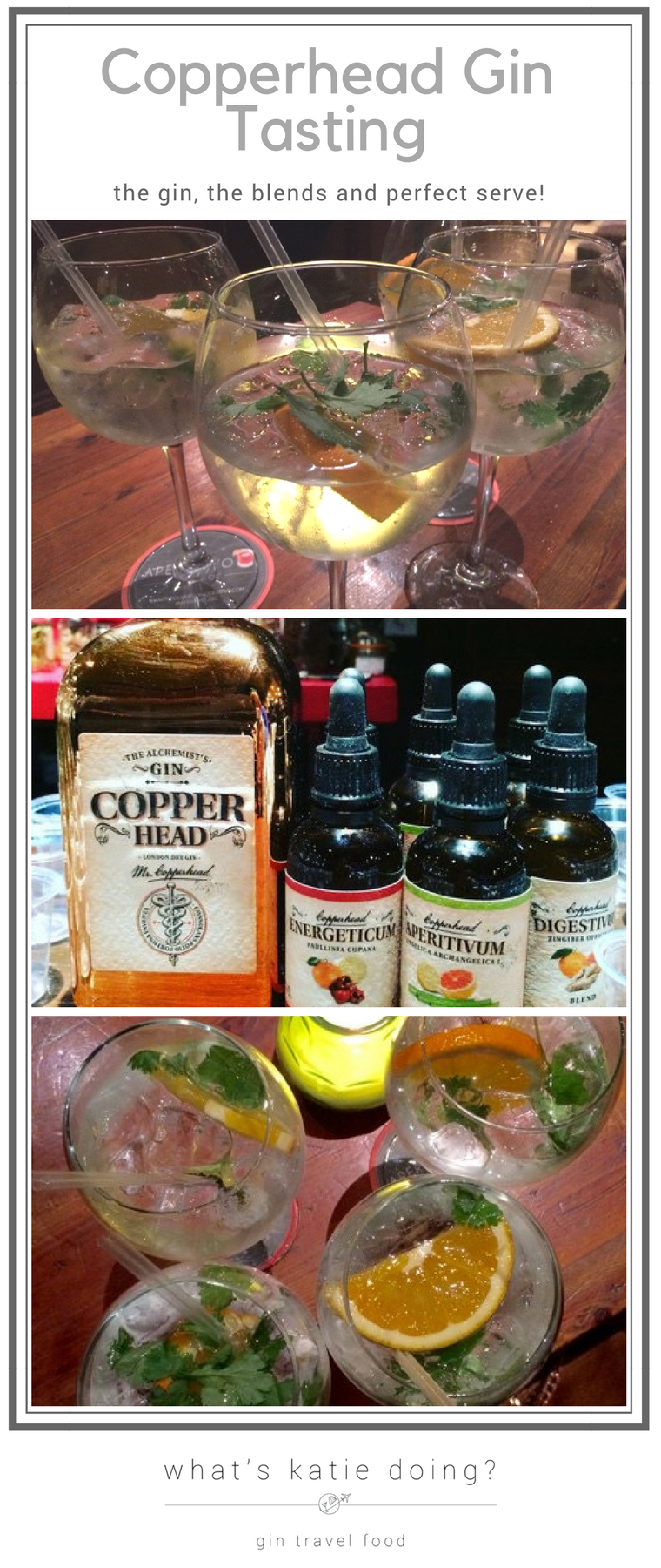 Copperhead Gin Tasting on What's Katie Doing? blog