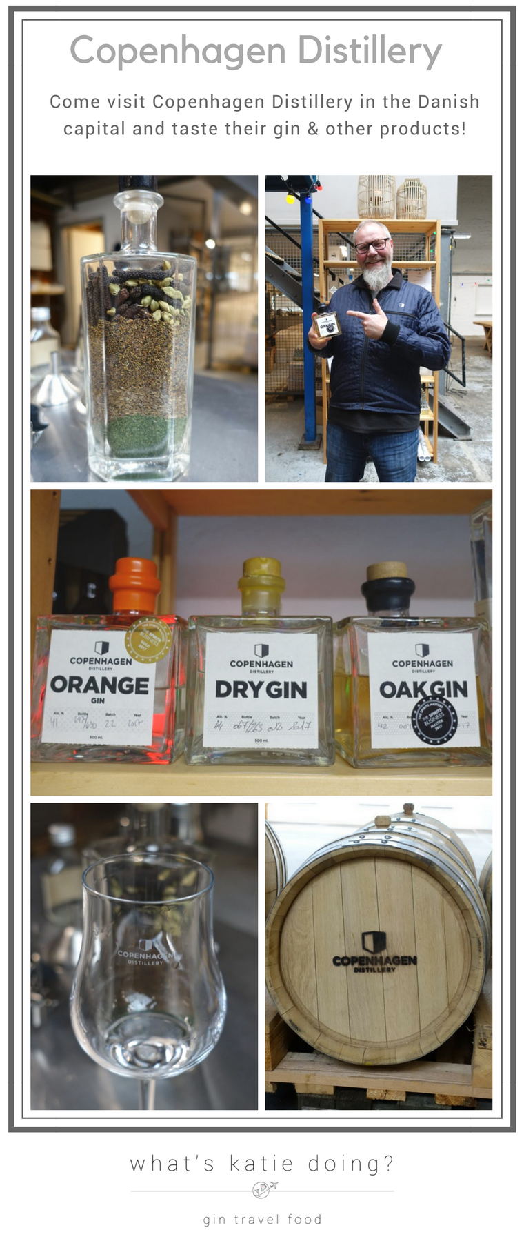 Pinterest image for Copenhagen Distillery visit