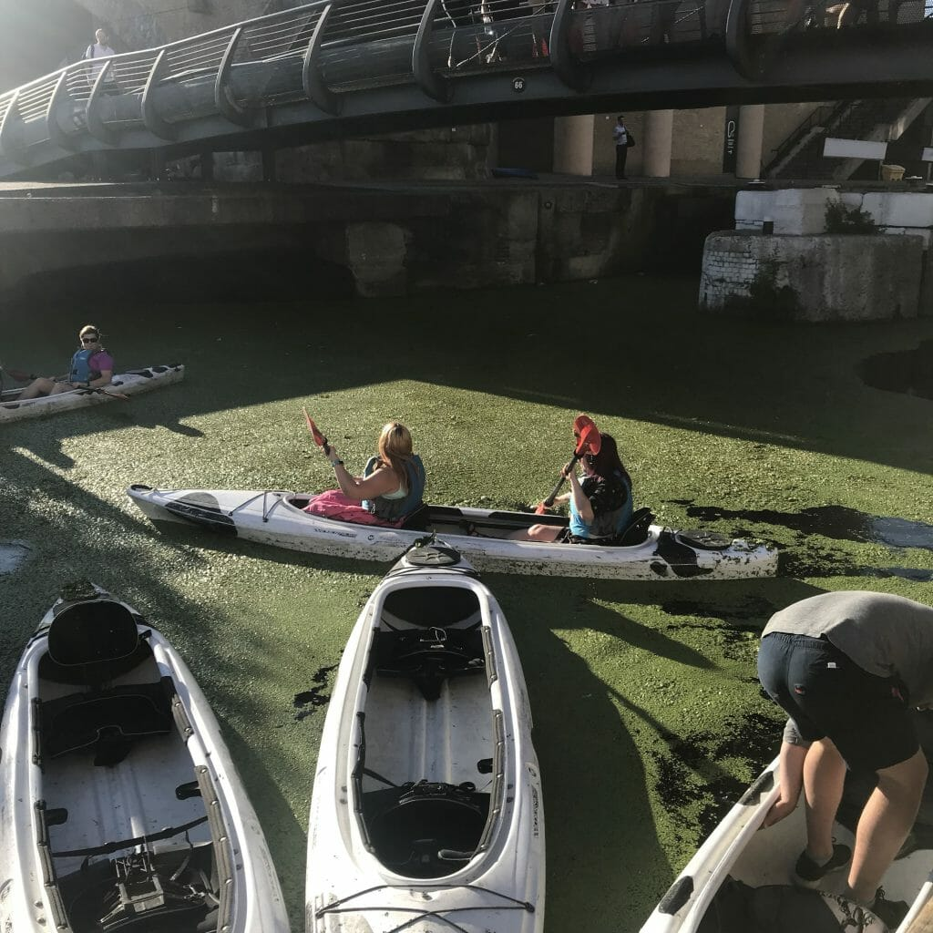 Kayaks in the weed covered canal