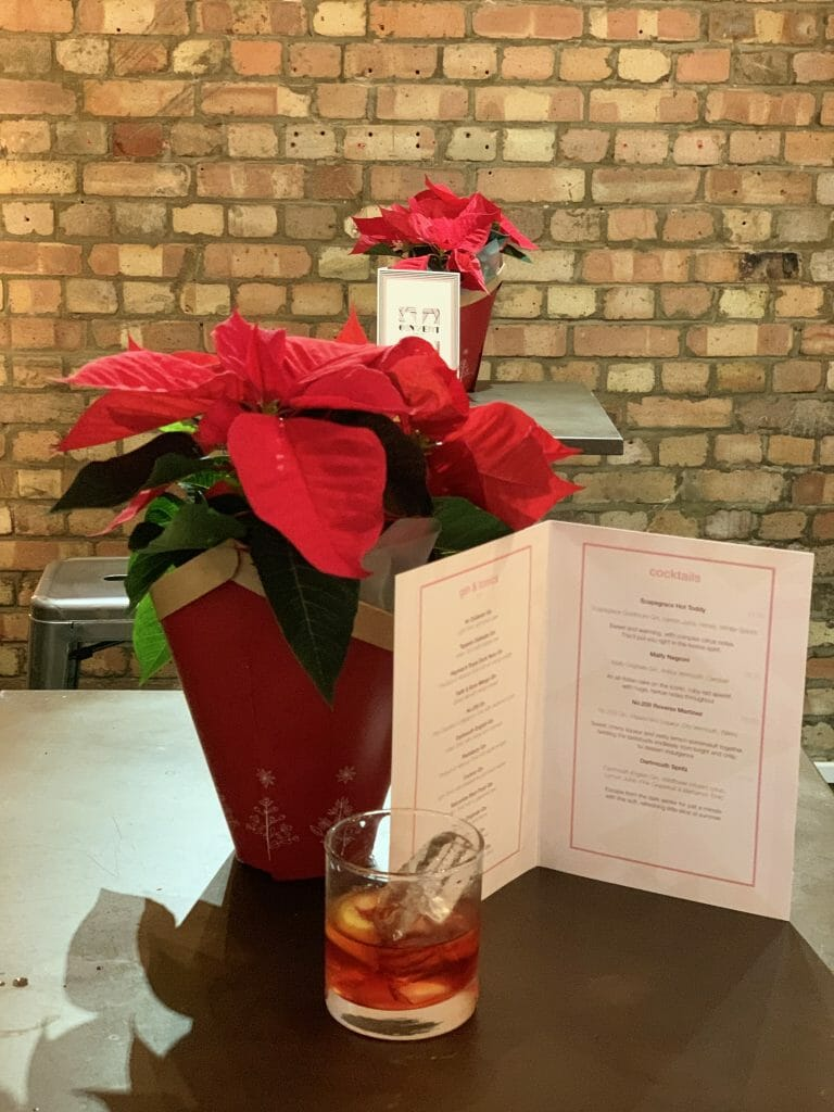 Negroni with menu and poinsettia in background