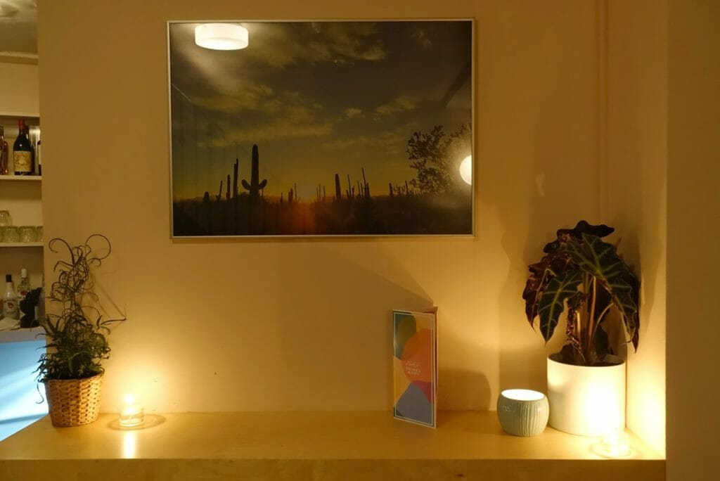 Cactus picture hanging on the wall