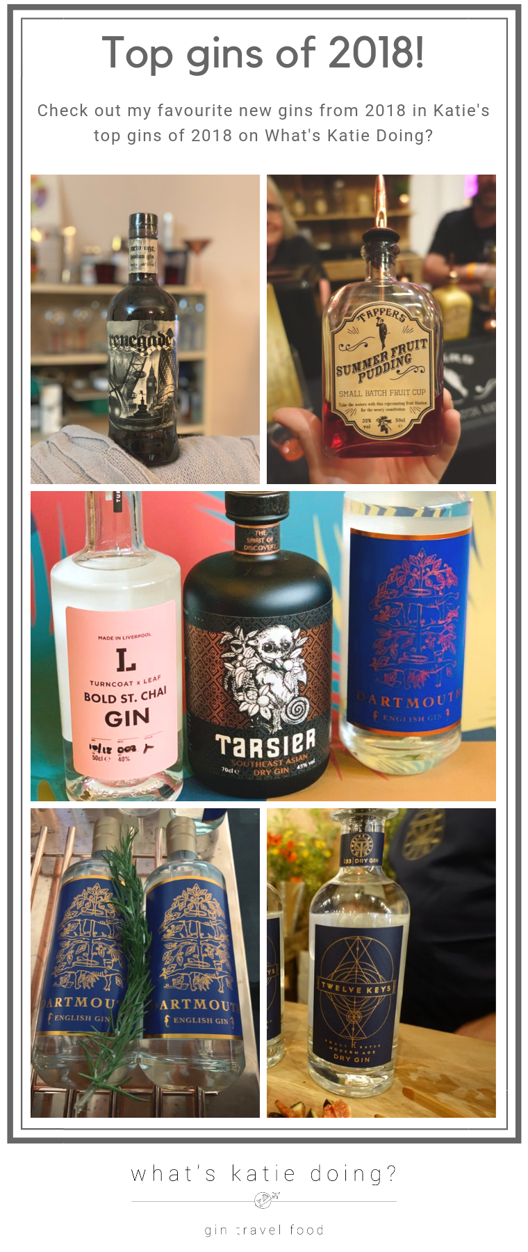 Katie's top new gins of 2018 - the ones to check out and keep an eye on