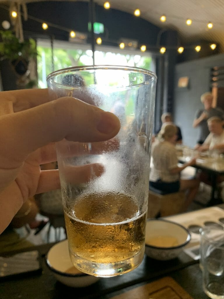 Glass of pale ale held up