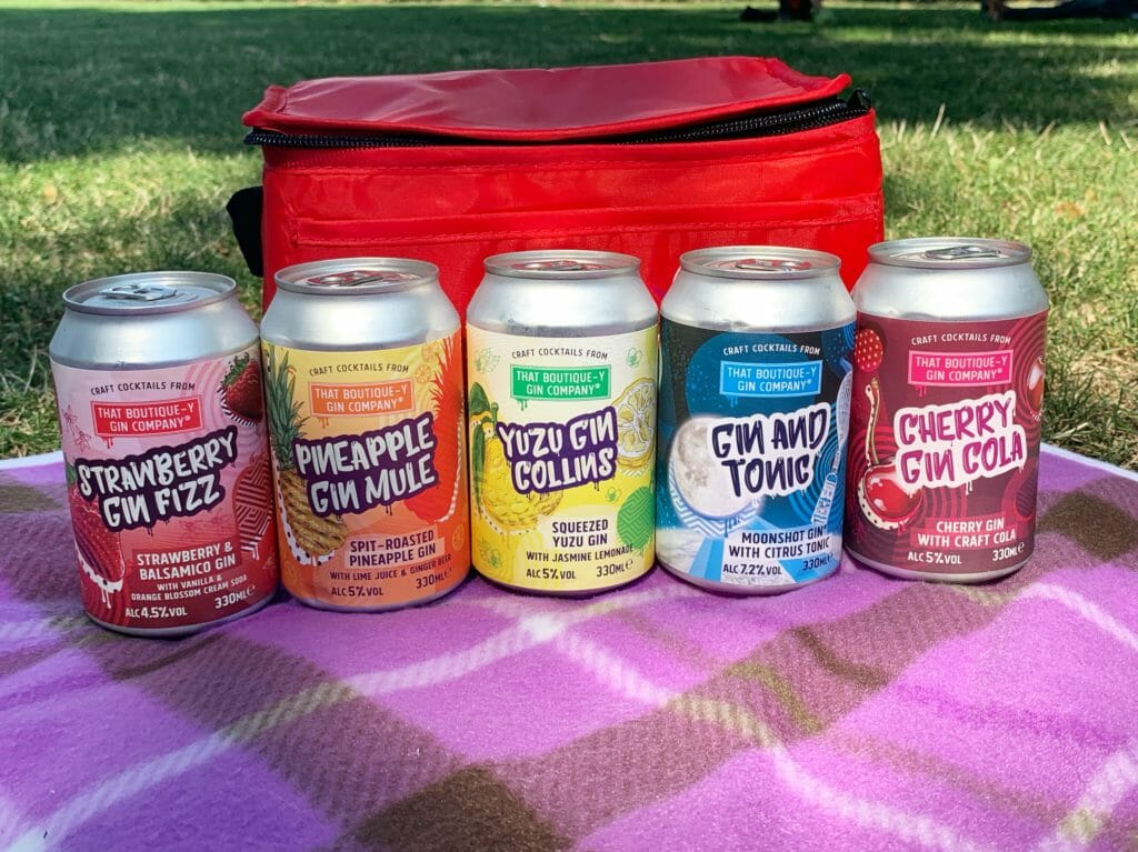 Boutiquey gin cocktail cans on picnic blanket