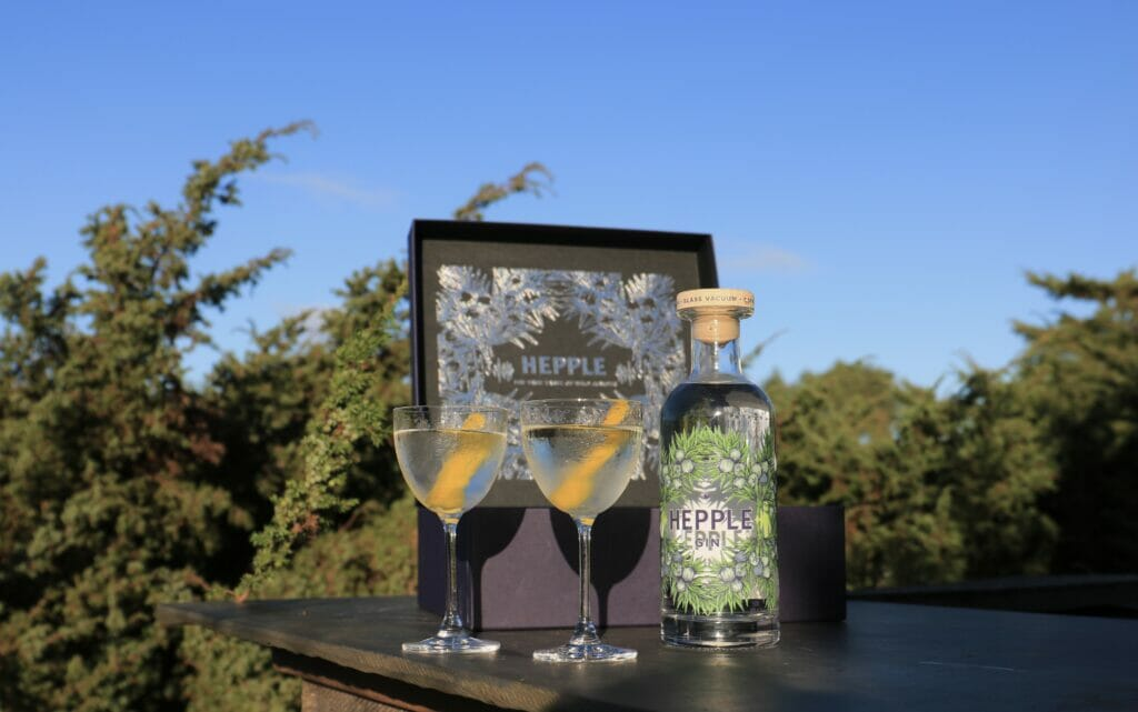 Hepple gift box in front of juniper bush, with Hepple gin bottle and glasses with martini in them